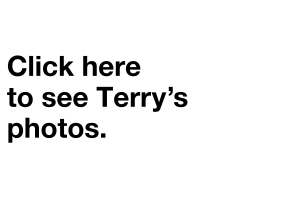 CLICK_HERE_TERRY_NEW