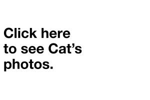 _CLICK_HERE_NEW_CAT