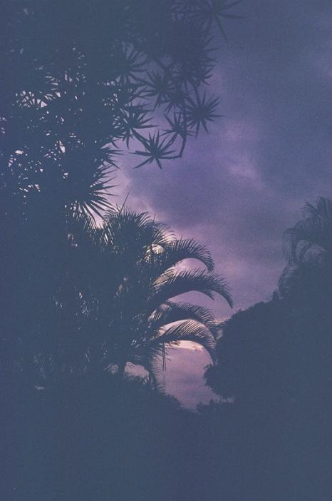 costa-rica-lights copy