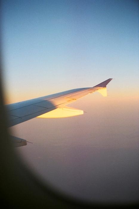 wing-flight-2 copy