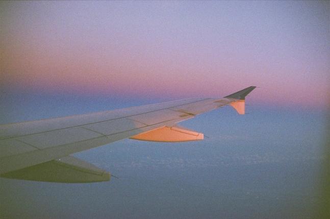 wing-flight copy