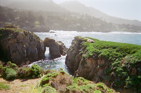 point-lobos-copy