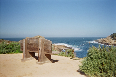 point-lobos6-copy