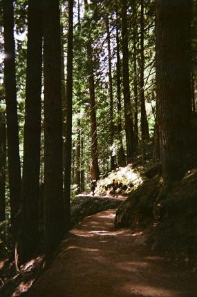 exiting_garibaldi_lake_hike-caseyleah_