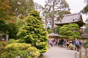 sf_00_san-francisco_japaness-tea-garden