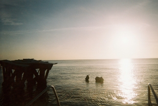 16-12-02-fujifilm-disposable-27exp-400-iso-tangalooma-disposable-diary-being-erin14-copy