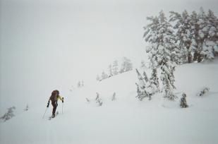 brunodennisallendog-skitourapproachtosteelehut-dec2016-copy