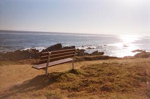 Monterey_08 copy