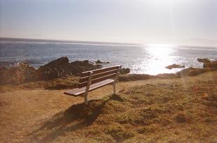 Monterey_10 copy