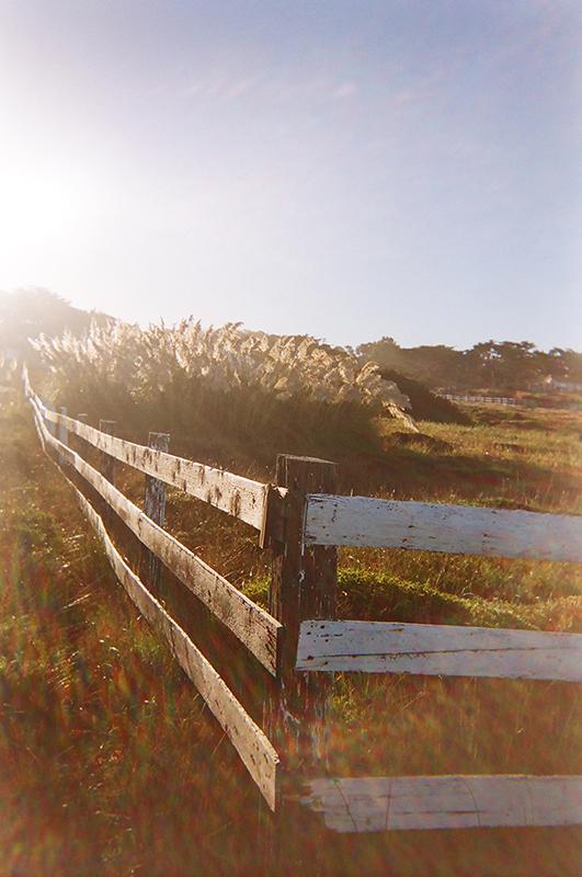 Monterey_15 copy