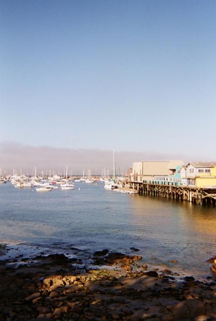 Monterey_19 copy
