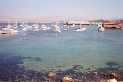 Monterey_20 copy