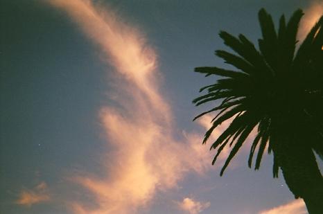 Pacific Grove_00 copy