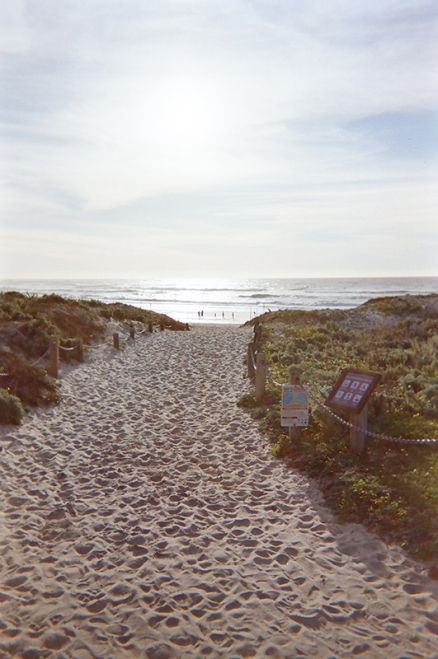 Asilomar Beach_02 copy
