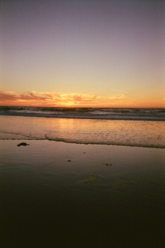 Asilomar Beach_07 copy