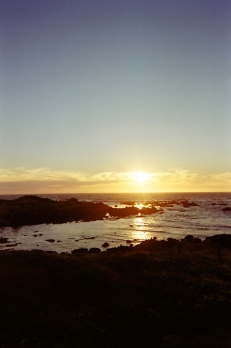 Asilomar Beach_11 copy