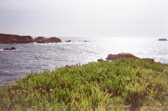 Garrapata State Beach_06 copy