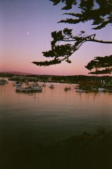 Monterey_02 copy