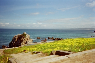 Pacific Grove_18 copy