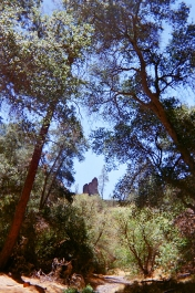 Pinnacles National Park_07 copy