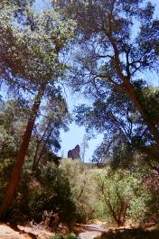 Pinnacles National Park_07 copy