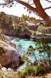 Point Lobos_00 copy