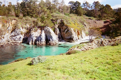 Point Lobos_03 copy