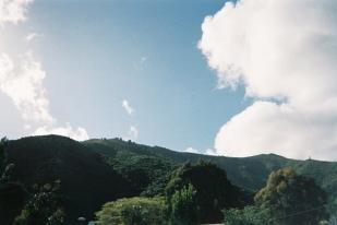 Photo 8 copy