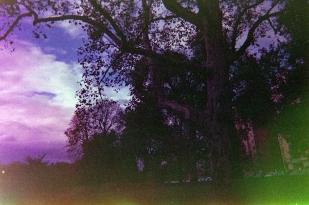 Photo Jan 07, 2 19 04 PM copy
