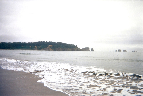 15.29.08.2018 - La Push - Washington copy