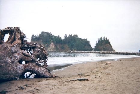 16.29.08.2018 - La Push - Washington copy