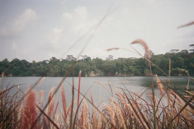 Nurashik_Kodak800_24 copy