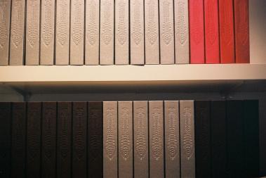 f1000001 copy