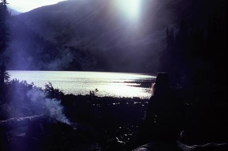 20191106-treefrendo_film-035 copy