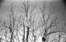 135-209_FP4_Sardina_005 copy