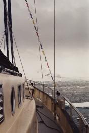 JESSA_G_13_INDISPOSABLECONCEPT_42_SvalbardBurton_2019_ValienteFlags